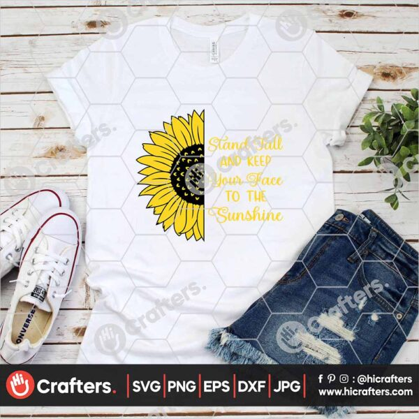 534 Realistic Sunflower SVG PNG For Cricut and Silhouette
